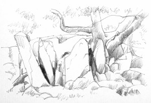 Tree and Rocks - pencil drawing