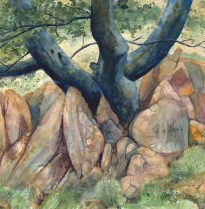 Tree and Rocks 2 (watercolour)